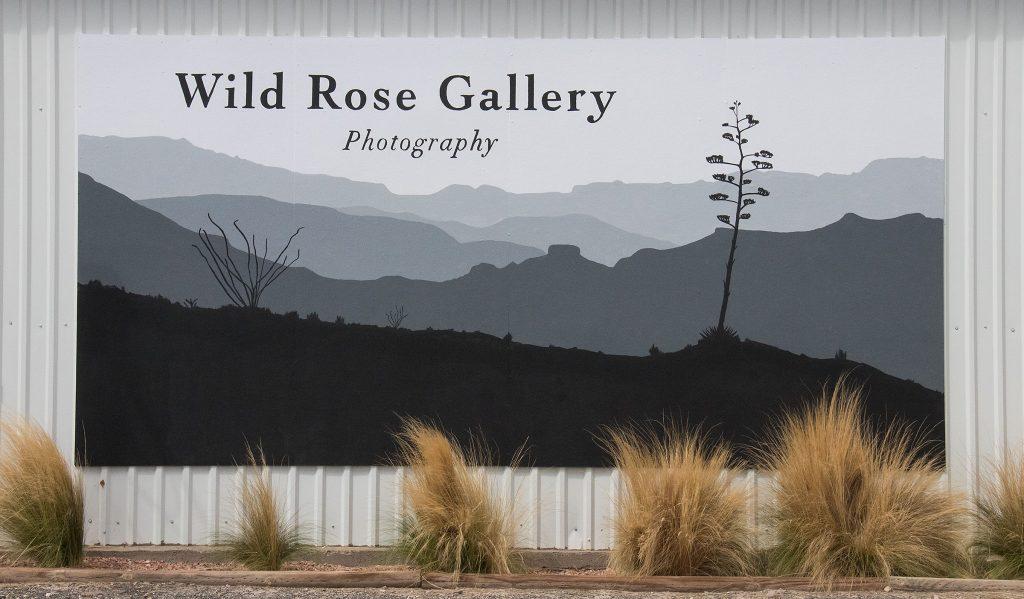 Gallery Mural